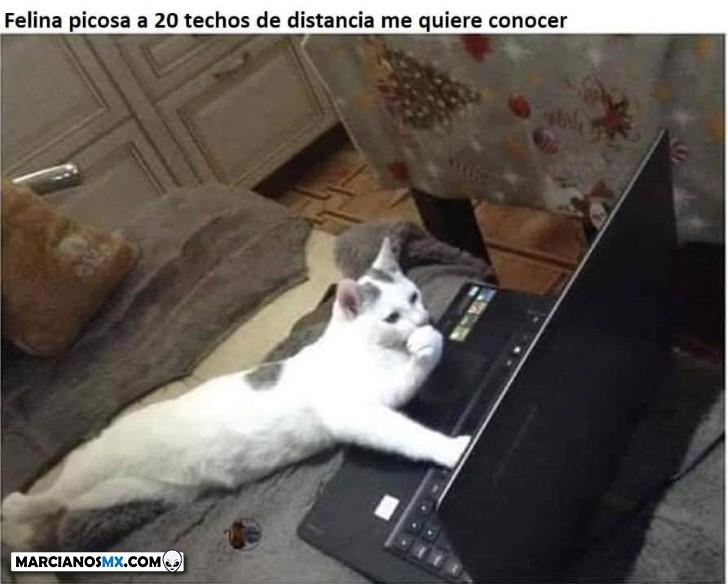 Marcianadas 409 06122019001227 (107)