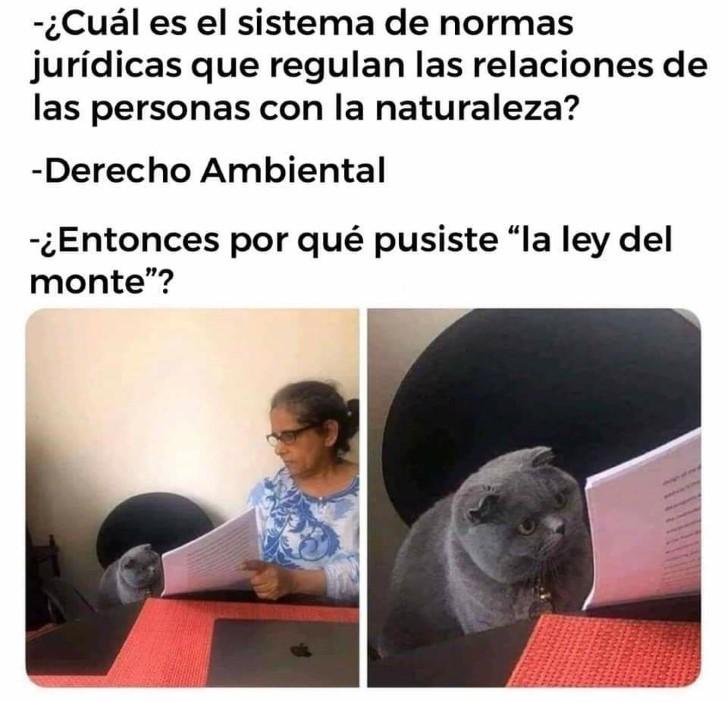 Marcianadas 409 06122019001227 (199)
