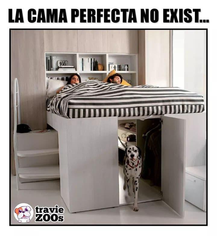 Marcianadas 410 13122019001525 (34)