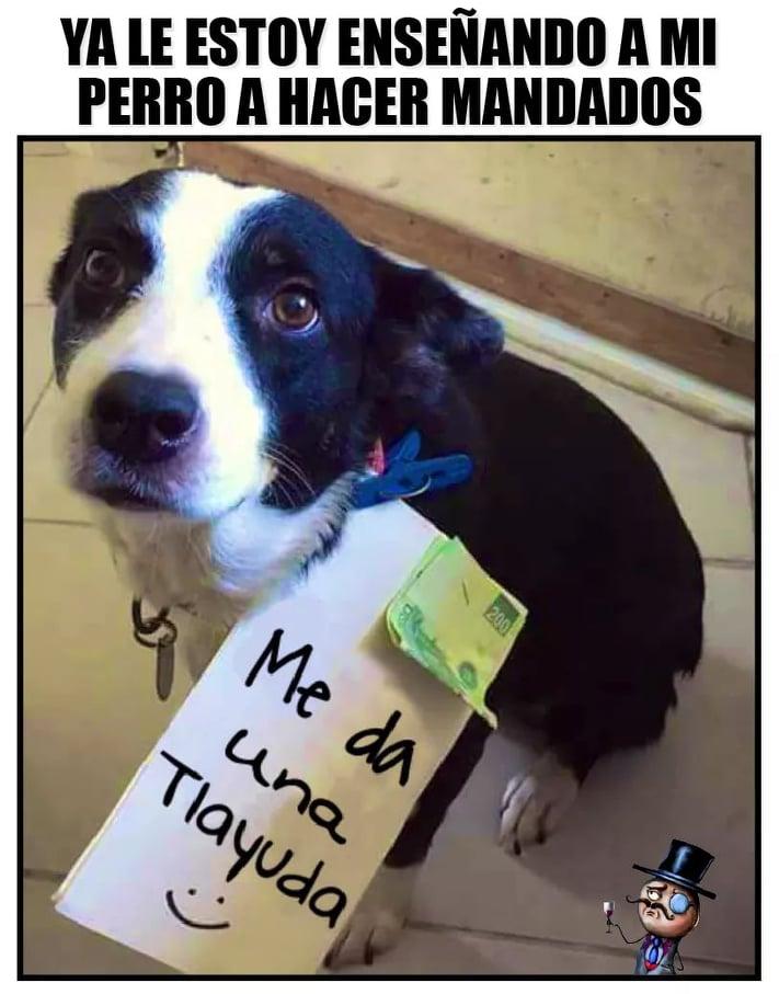 Marcianadas 410 13122019001525 (69)