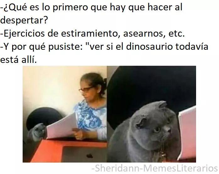 Marcianadas 411 20122019001133Ultimas2019 (117)