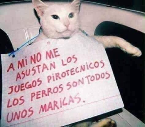 Marcianadas 411 20122019001133Ultimas2019 (122)