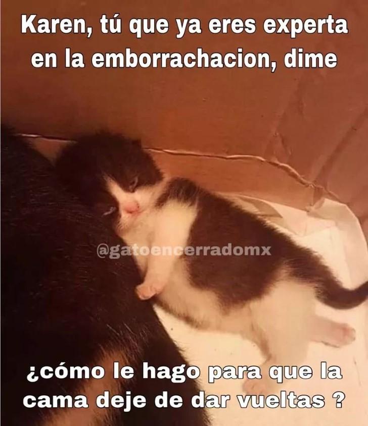 Marcianadas 411 20122019001133Ultimas2019 (123)