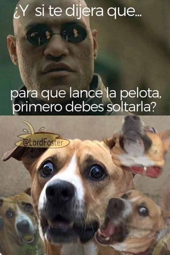 Marcianadas 411 20122019001133Ultimas2019 (190)