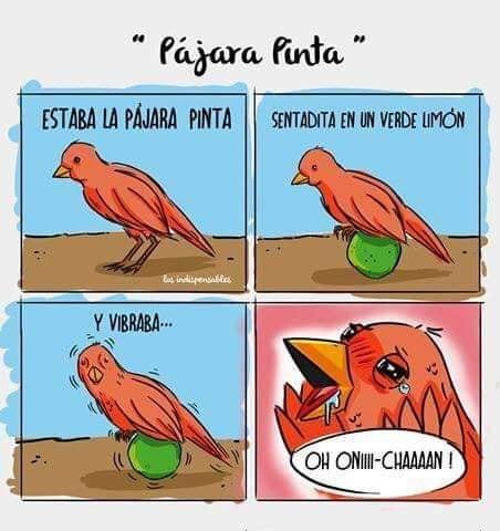 Marcianadas 411 20122019001133Ultimas2019 (26)