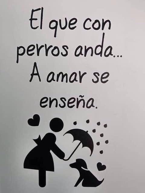 Marcianadas 411 20122019002003Ultimas2019 (12)
