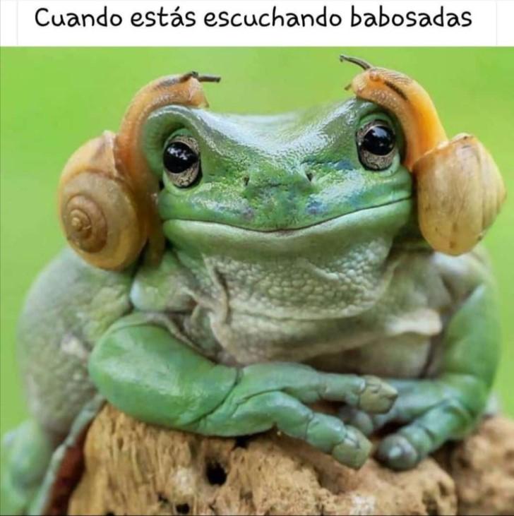 Marcianadas 411 20122019002003Ultimas2019 (39)