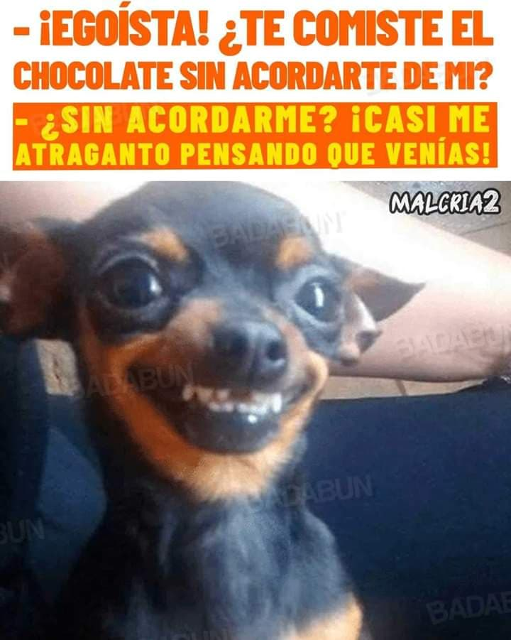 Marcianadas 412 03012020001447 (114)