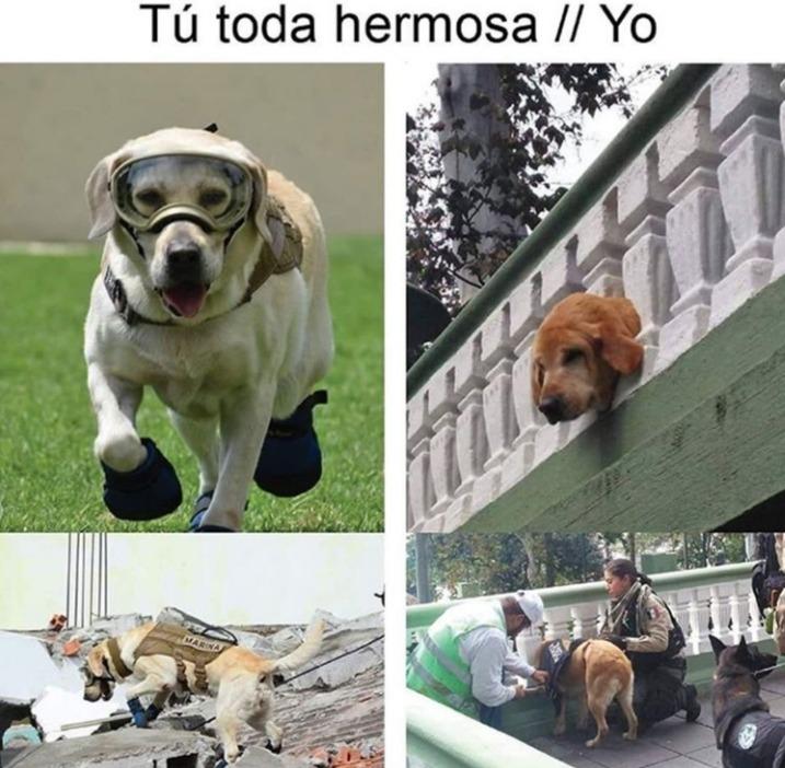 Marcianadas 412 03012020001447 (167)