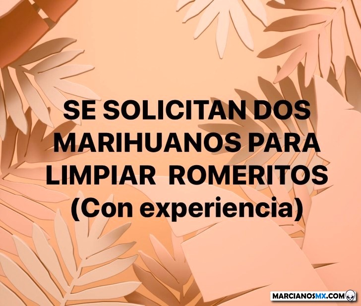 Marcianadas 412 03012020001447 (186)