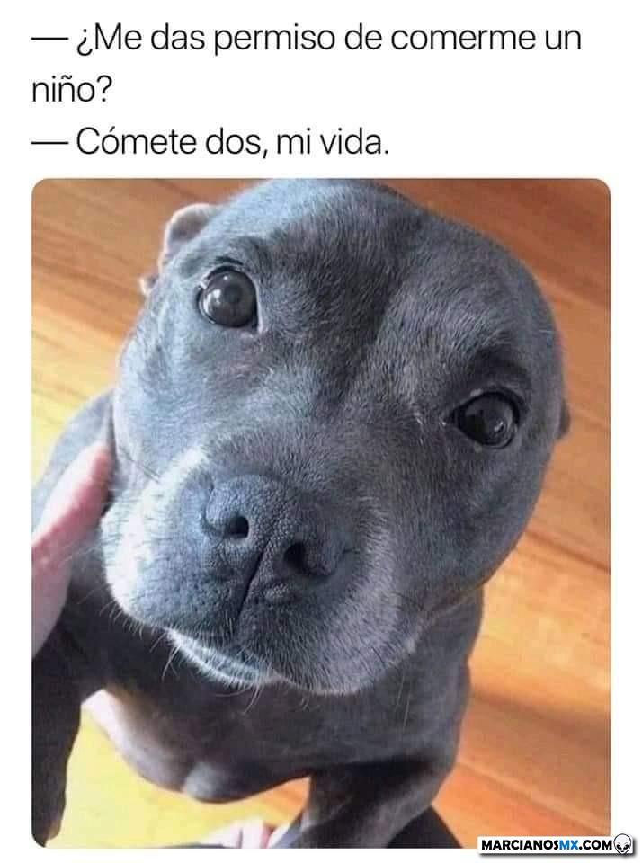 Marcianadas 412 03012020001447 (216)