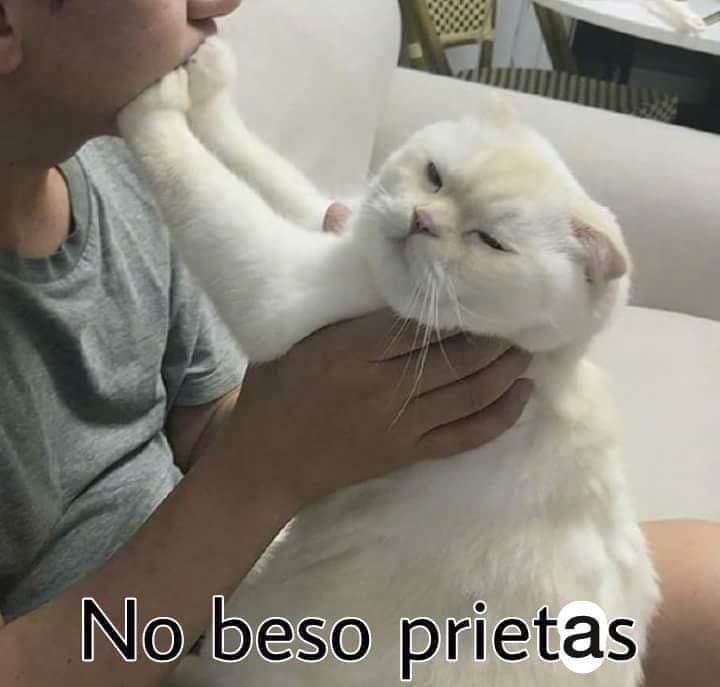 Marcianadas 412 03012020001447 (220)