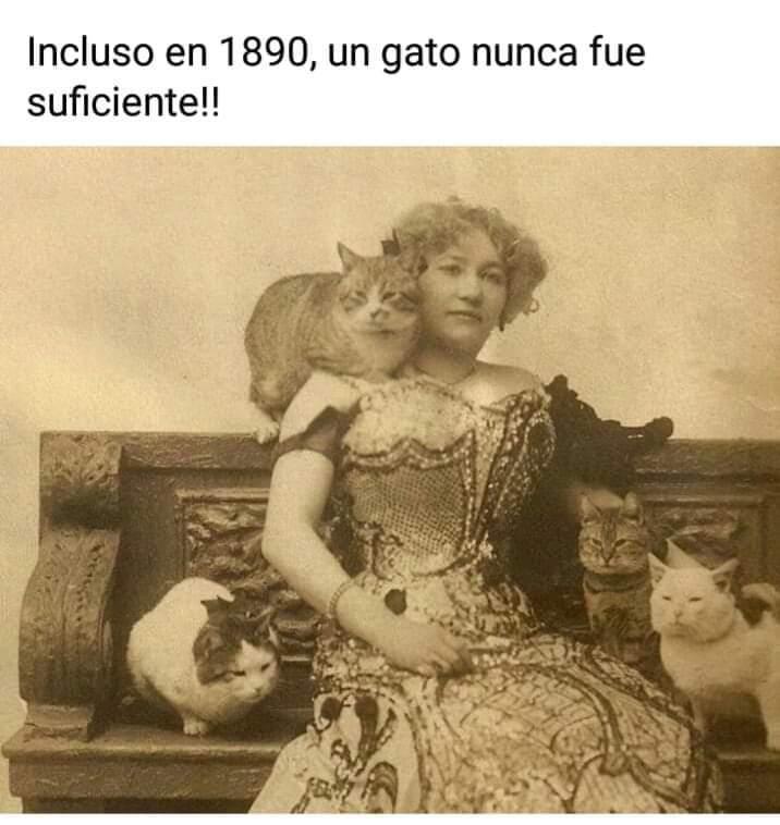 Marcianadas 412 03012020001447 (256)