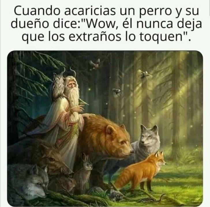Marcianadas 412 03012020001447 (309)