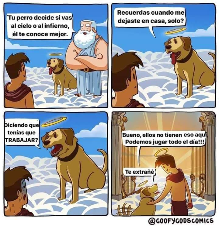 Marcianadas 412 03012020001447 (75)