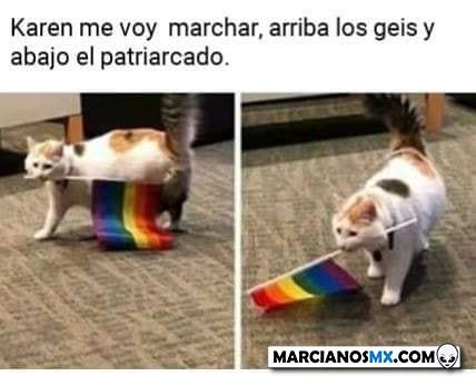 Marcianadas 415 24012020 (246)