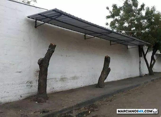 Marcianadas 416 30012020001442 (201)