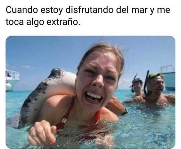 Marcianadas 416 30012020001442 (93)