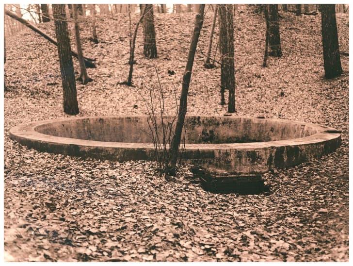 pozo en el bosque