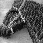 La gran masacre de caballos en la Primera Guerra Mundial