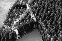 tributo a los caballos burros y mulas muertos en la primera guerra mundial