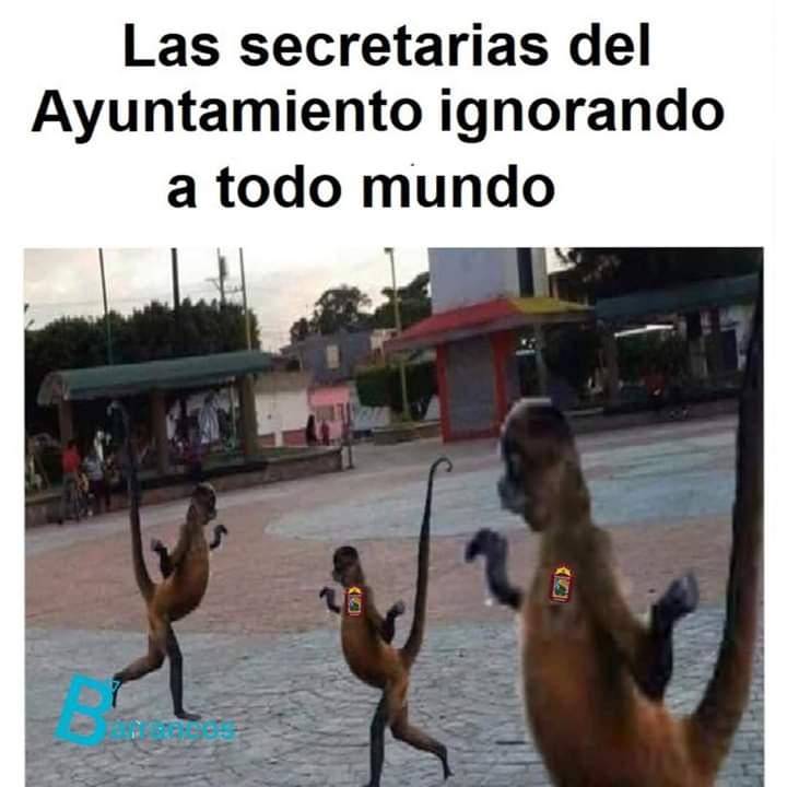 Marcianadas 417 0702020 (231)