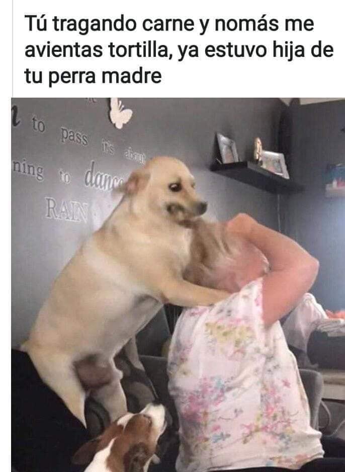Marcianadas 417 0702020 (70)