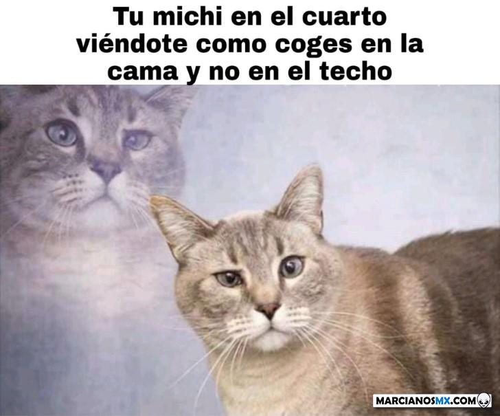 Marcianadas 418 14022000921 (134)