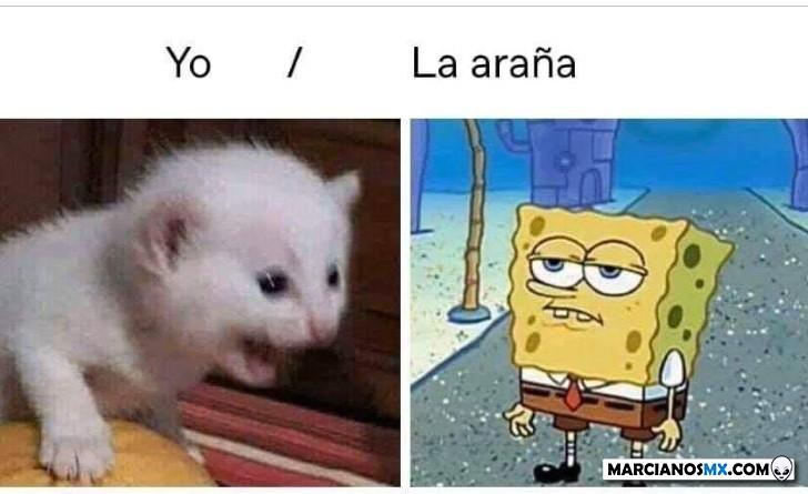 Marcianadas 418 14022000921 (68)