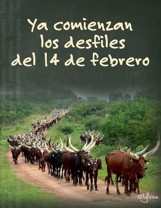 Marcianadas 418 14022000921 (83)