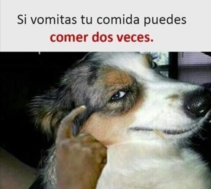 Marcianadas 419 21022020001301 (288)