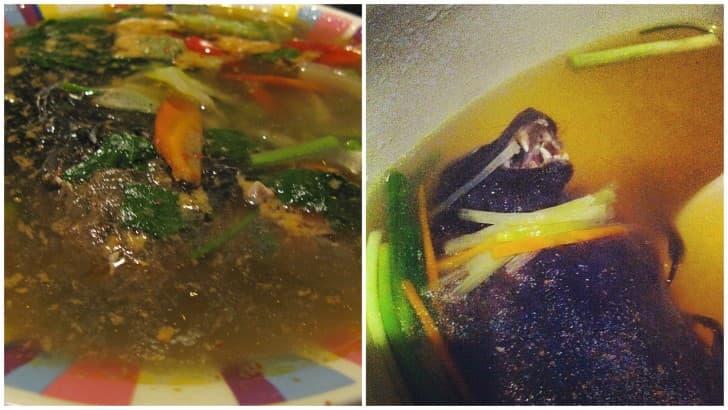 sopa de murcielago