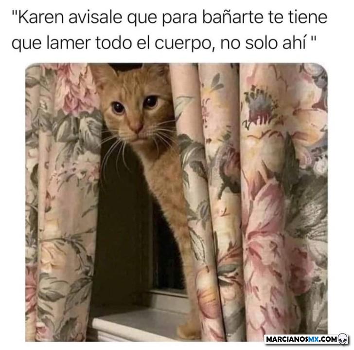 Marcianadas 422 13032020001256 (109)