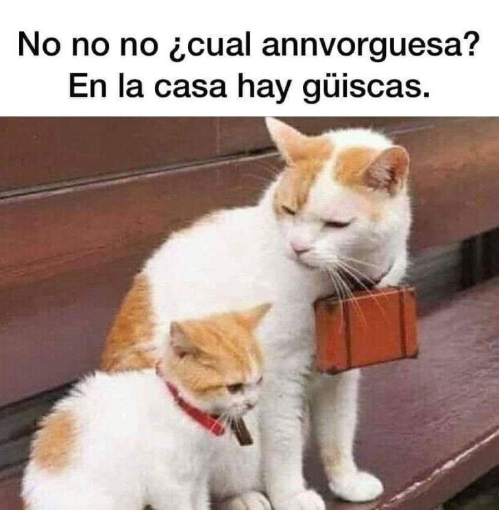 Marcianadas 422 13032020001256 (136)