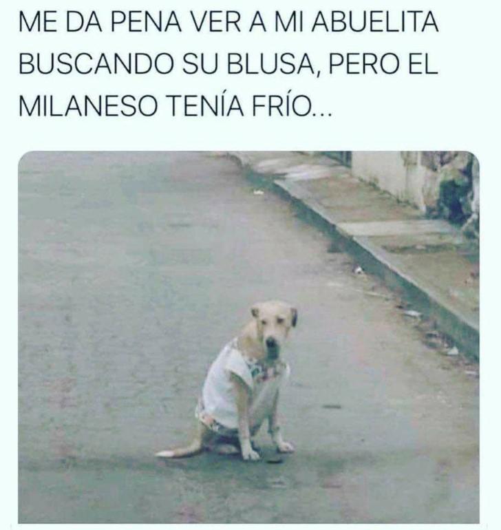 Marcianadas 422 13032020001256 (153)
