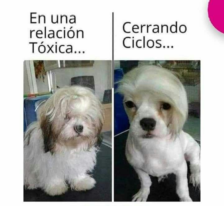 Marcianadas 422 13032020001256 (225)