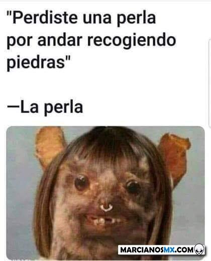 Marcianadas 422 13032020001256 (39)