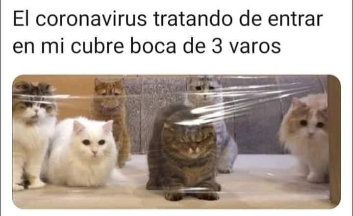 Marcianadas 423 20032020 (114)