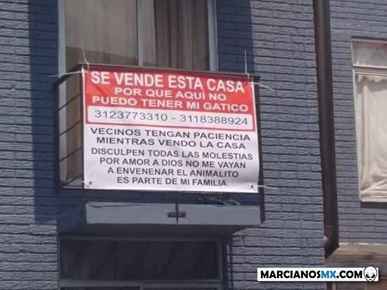 Marcianadas 423 20032020 (121)
