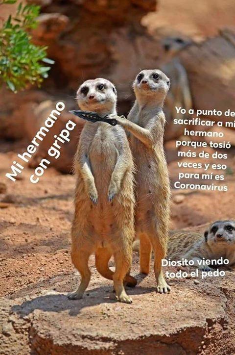 Marcianadas 423 20032020 (223)