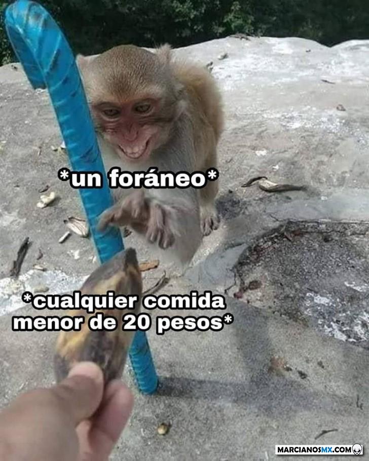 Marcianadas 423 20032020 (224)