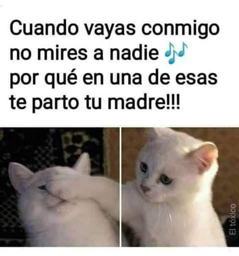 Marcianadas 423 20032020 (241)