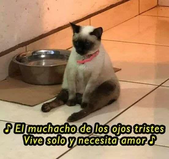 Marcianadas 424 27032020001350 (244)
