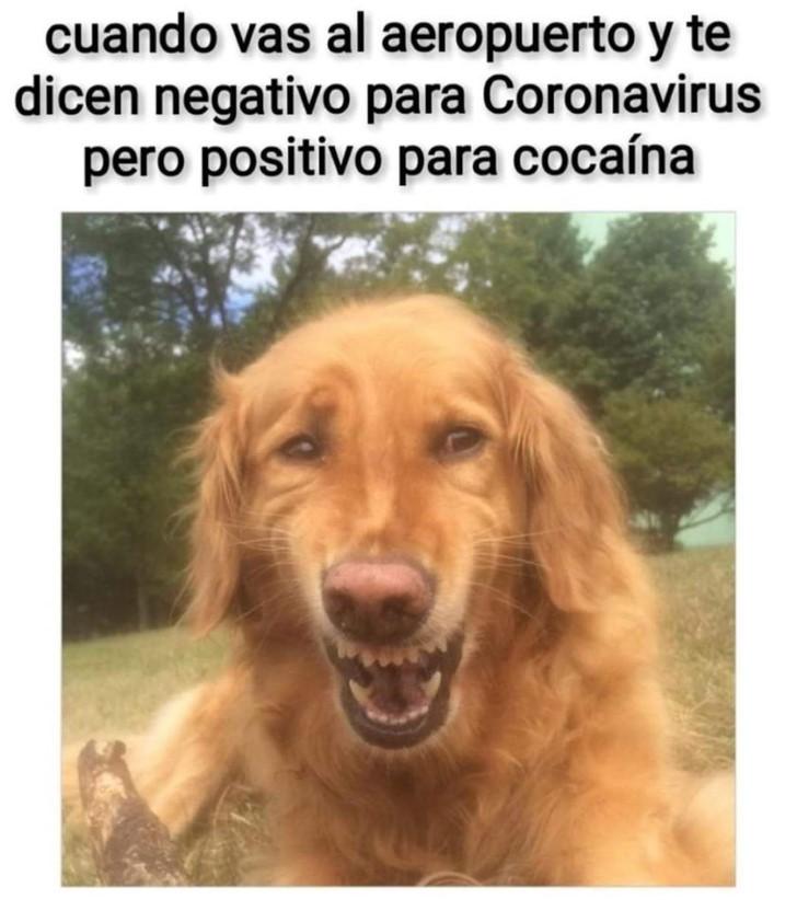 Marcianadas 424 27032020001350 (31)