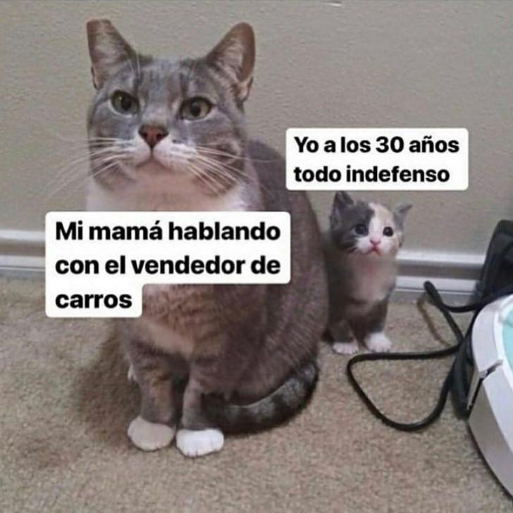 Marcianadas 424 27032020001350 (60)