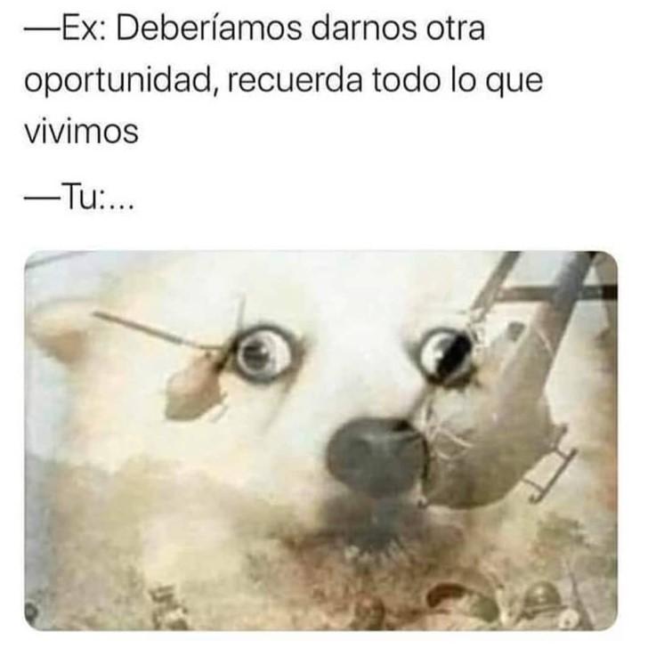 Marcianadas 424 27032020001350 (65)
