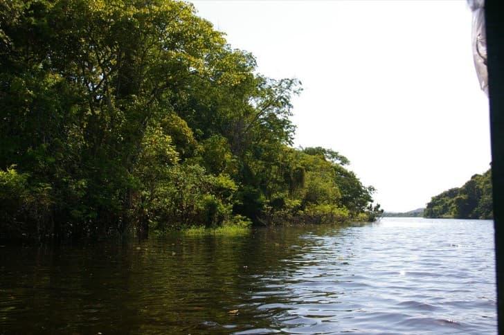 rio y bodque en el amazonas