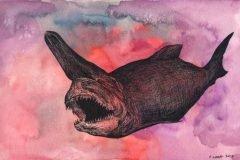 tiburon duende ilustracion