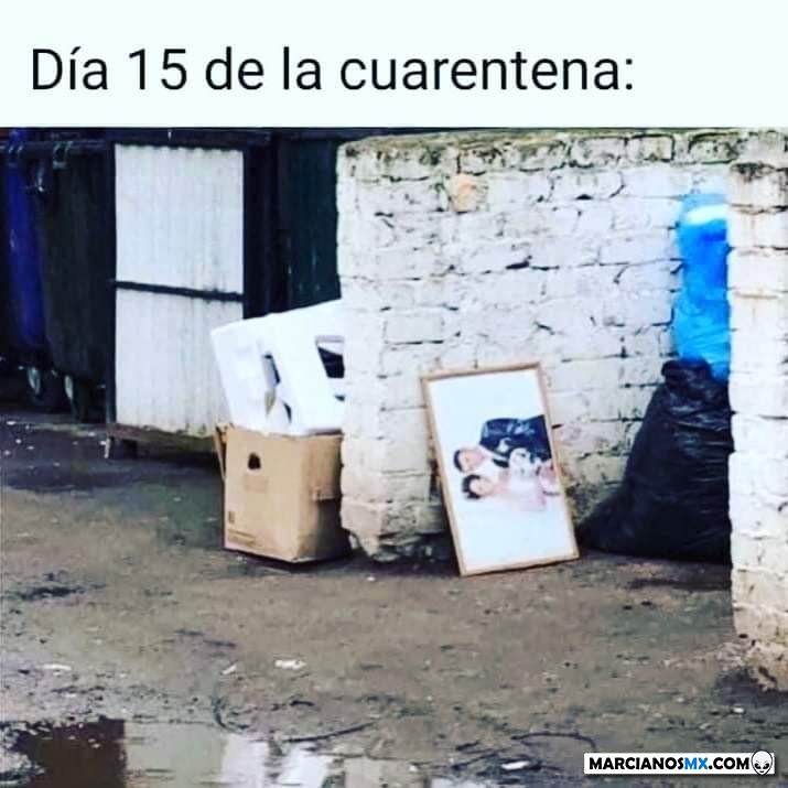 Marcianadas 426 10042020001248 (192)