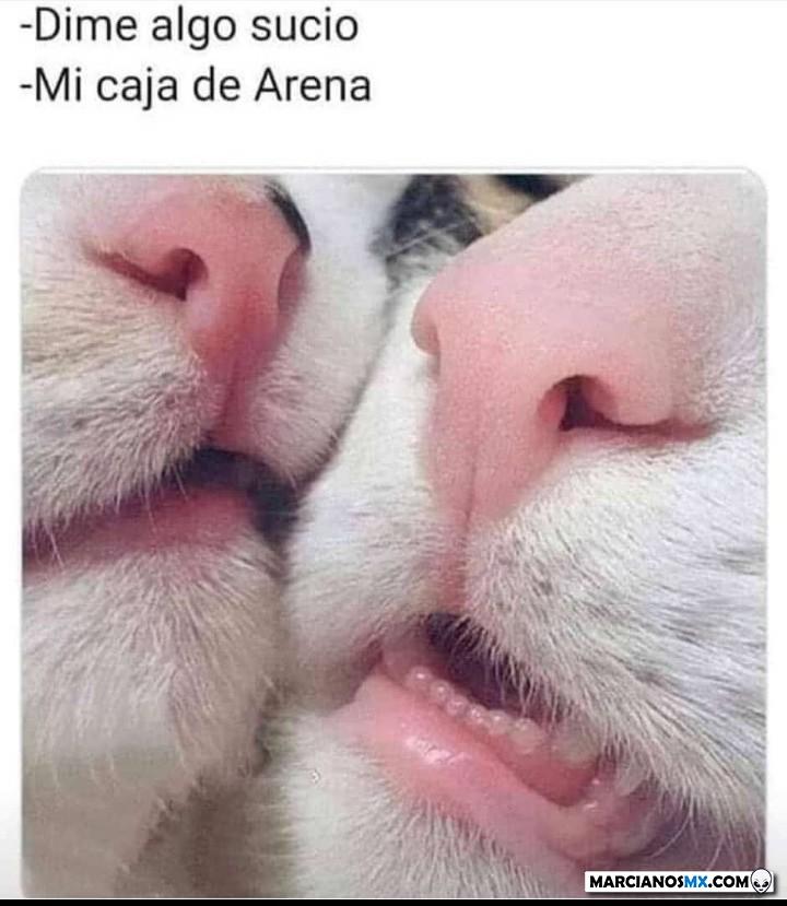 Marcianadas 426 10042020001248 (7)